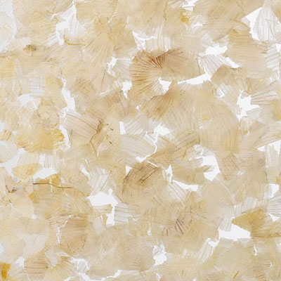 AW-0721 Onion Peel SS - Translucent Materials
