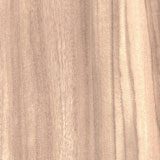AW-0242 Australian Walnut - Woodgrains