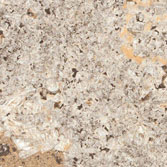 AW-0222 Caribbean Shell - Stone Patterns
